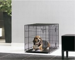 Dog Cottage